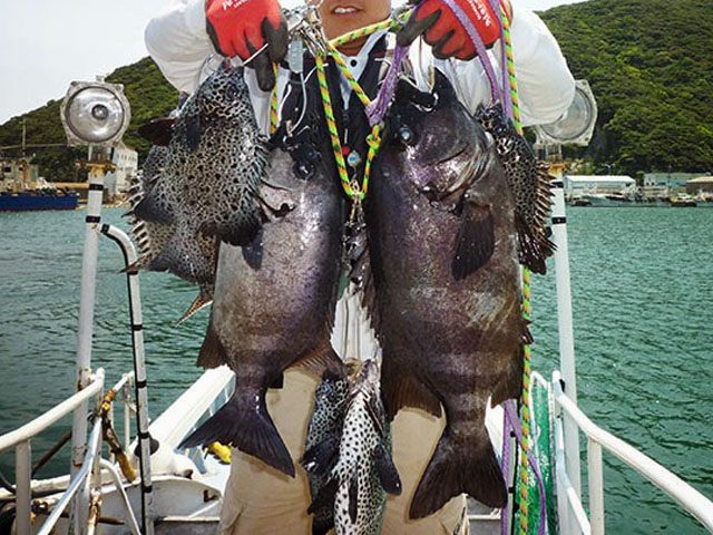 対馬 釣り 石鯛 イシガキダイ