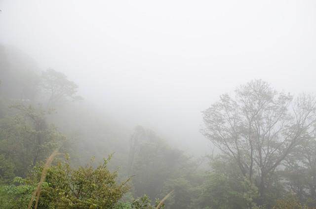 山間部の霧