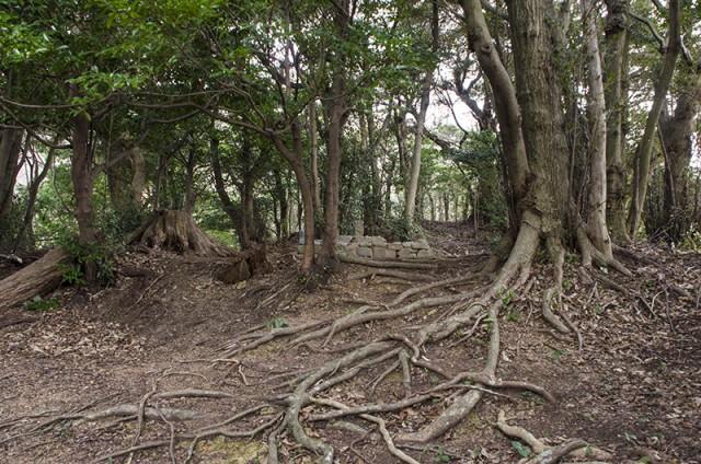 佐須陵墓参考地05